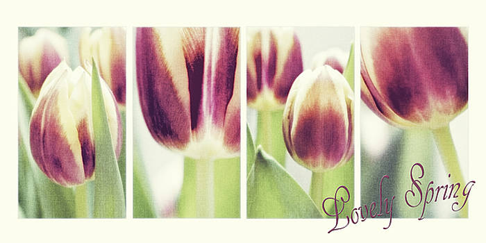 Angela Doelling AD DESIGN Photo and PhotoArt - Lovely Spring