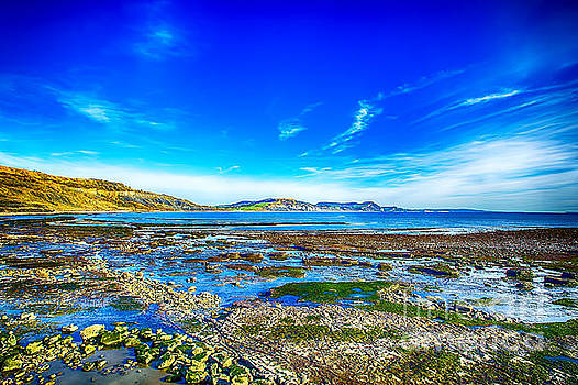 Low Tide at Lyme Regis by Chris Thaxter