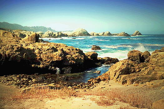 Low Tide At Point Lobos by Joyce Dickens