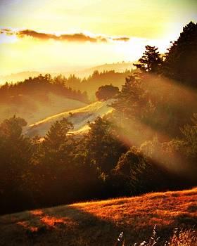 Marin Sunset by David Powell