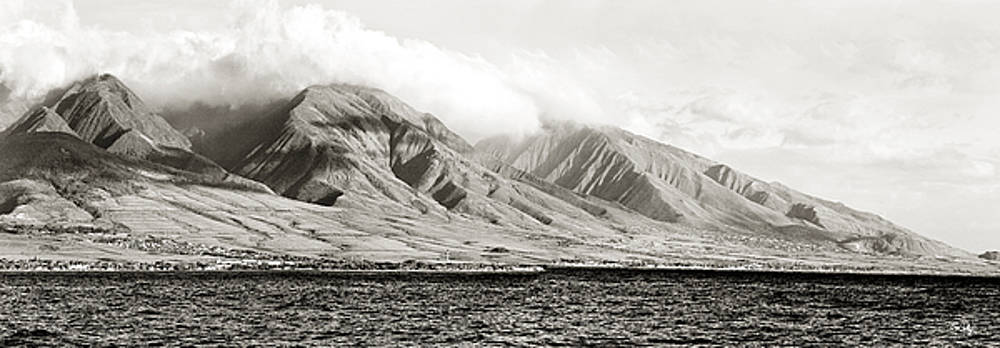 Scott Pellegrin - Maui Pano