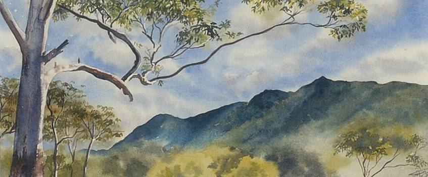 Mc Graths Hump NSW by Sandra Phryce-Jones