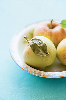 Mini Apples by Colleen Farrell