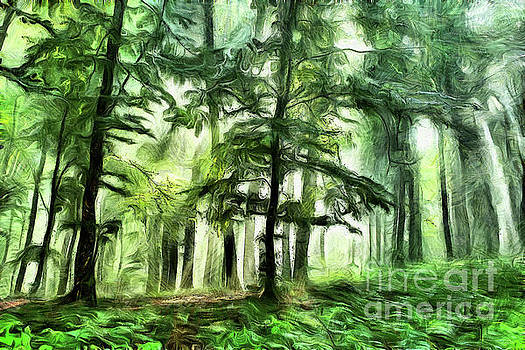 Misty forest paint by Odon Czintos