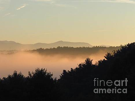 Misty Morning by Anita Adams
