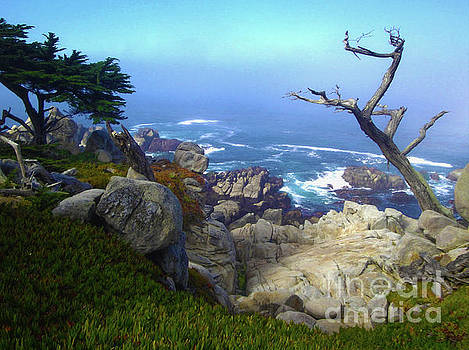Monterey by Gregory Dyer