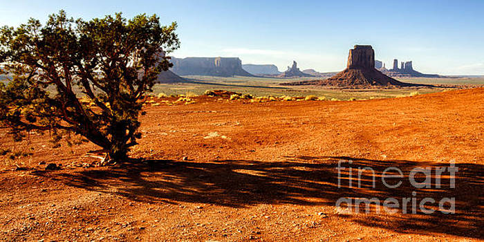 Monument Valley  by Thomas R Fletcher