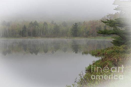 Morning Fog Series One by Daniel Ryan