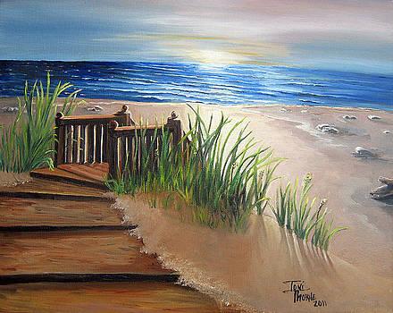 Morning Light by Toni  Thorne