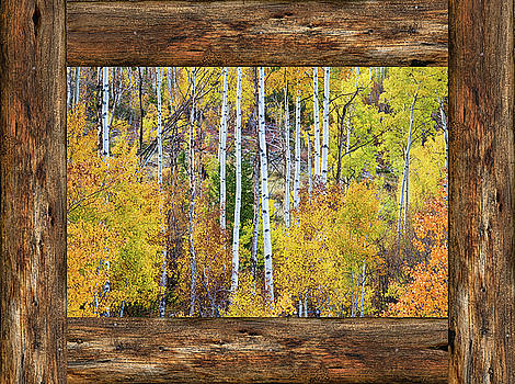 James BO Insogna - Colorful Aspen Forest Rustic Cabin Window View