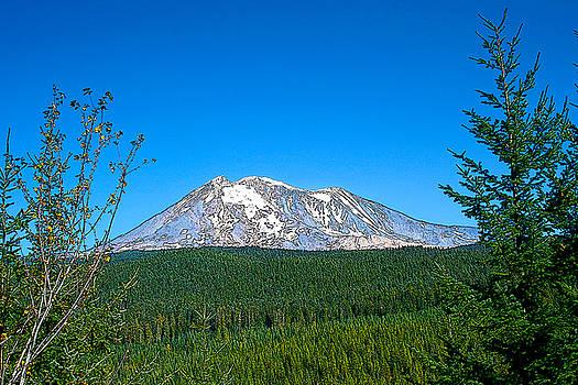 Mt Adams by Larry Darnell