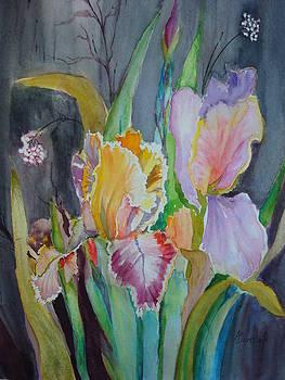 Night Blooms by AnnE Dentler