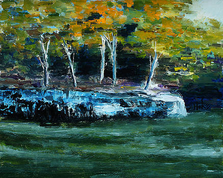 Norfork Lake by Scott Hoke