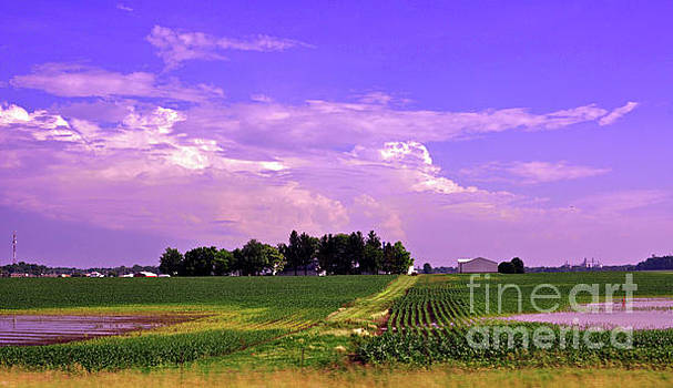 Ohio Farmland 2 by Lydia Holly