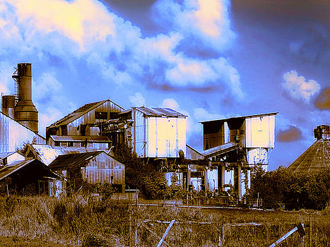 Dominic Piperata - Old Koloa Sugar Mill