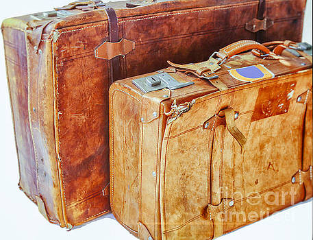 Patricia Hofmeester - Old leather suitcases