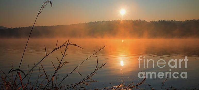 One autumn day at Ognyanovo Dam by Jivko Nakev