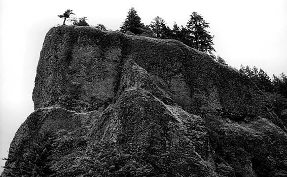 Oneonta Gorge, Mt. Hood National Forest, Oregon, 1978 by Wayne Higgs