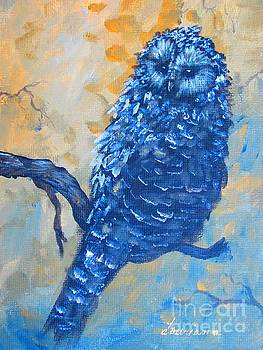 Owl by Laurianna Taylor