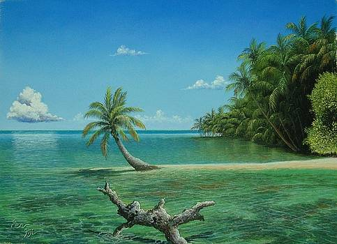 Palms of Fiji by Pravin Sen