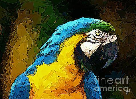 Pappagallo - Parrot Ara Ararauna by Zedi