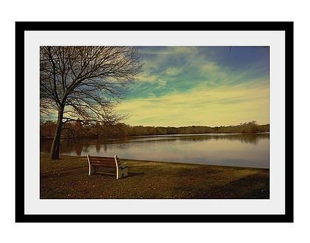 Park by Dana Flaherty