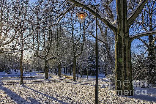 Patricia Hofmeester - Park in the snow