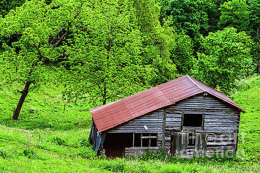 Pasture Field and Barn by Thomas R Fletcher