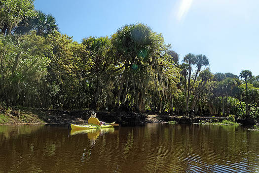 Peaceful Kayaking by Sally Weigand