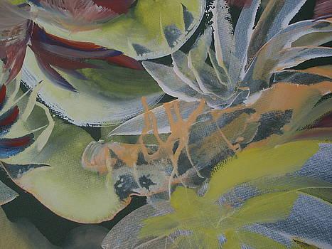 Petals by Vlado  Katkic