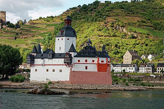 Pfalz Castle by Sally Weigand