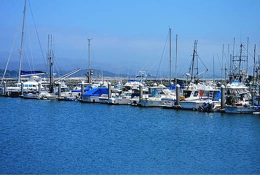 Pillar Point Harbor by Marian Jenkins