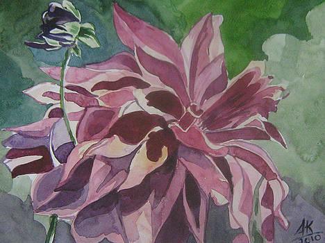 Pink Flower by Akhilkrishna Jayanth