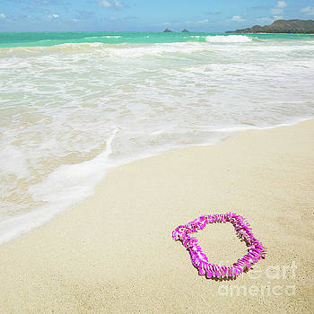 Pink Lei on Beach - Hipster Photo Square by Charmian Vistaunet