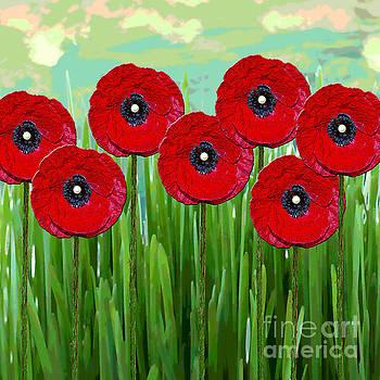 Poppies by Klara Acel