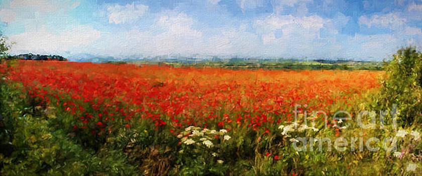 Poppy Fields by ShabbyChic fine art Photography