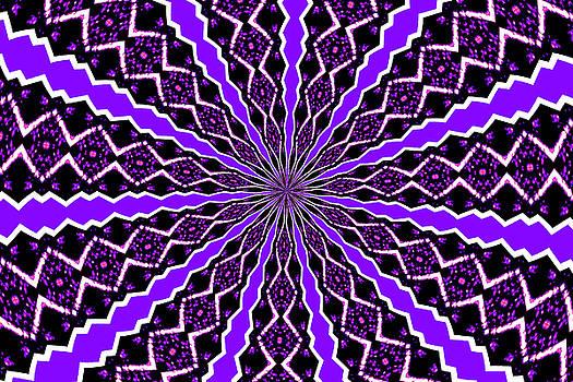 Karol Livote - Purple Daze
