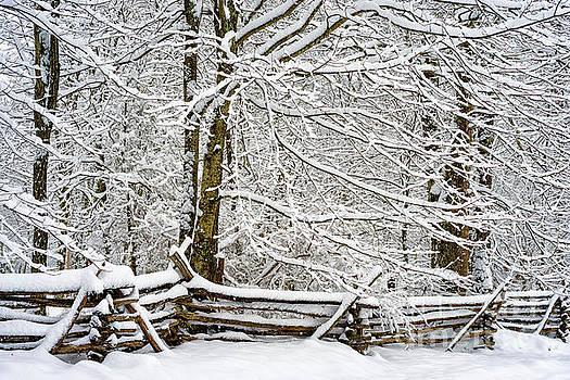Rail Fence and Snow by Thomas R Fletcher