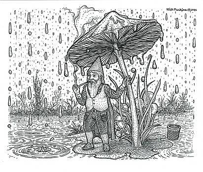 Rain Gnome  by Bill Perkins