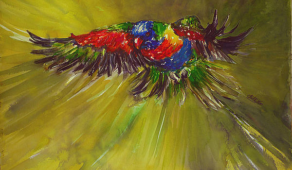Rainbow Flight by Shirley Roma Charlton