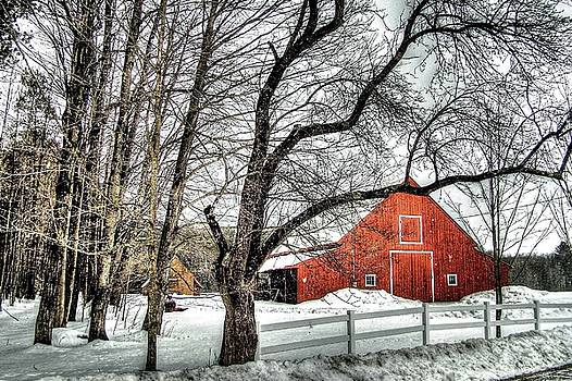 Red and White by Betsy Zimmerli