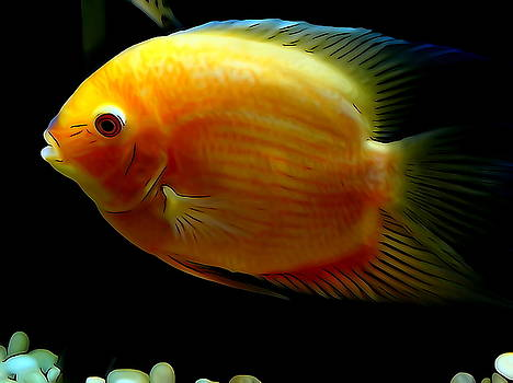Red Spot Gold Severum by Ines  Ganteaume