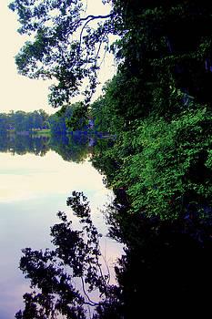 Reflections At Farrington Lake by Aron Chervin