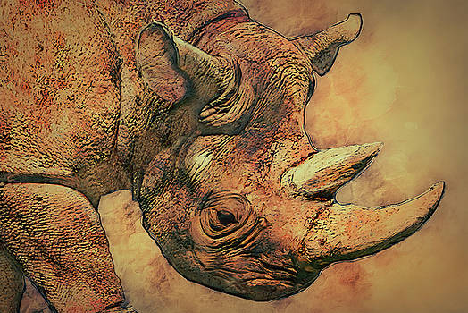 Jack Zulli - Rhino 5