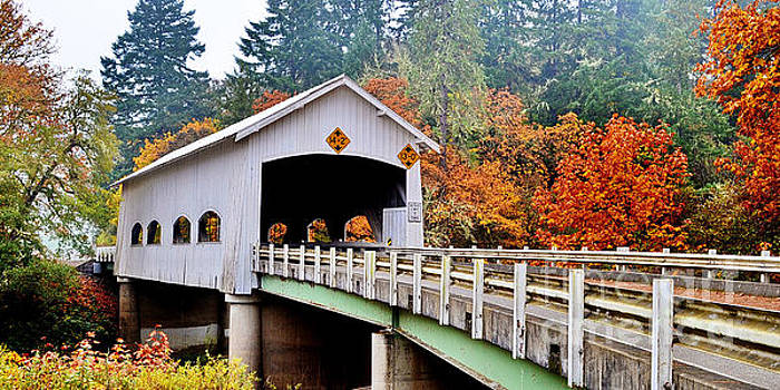 Rochester Covered Bridge by Ansel Price
