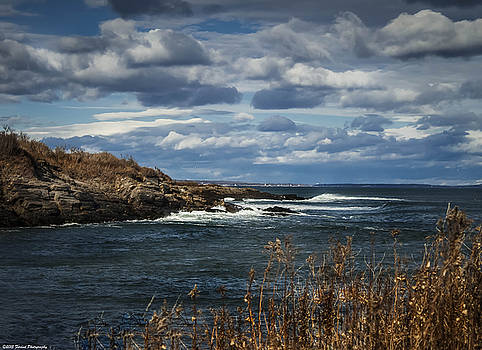 Rocky Shore Line Two Lights Maine  by Debra Forand