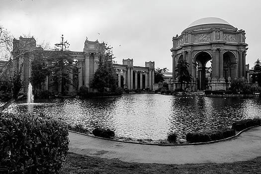 San Francisco, California, August, 2016  by Wayne Higgs