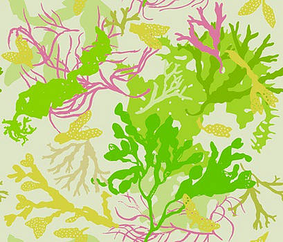 Sea flowers by Anthony Fishburne