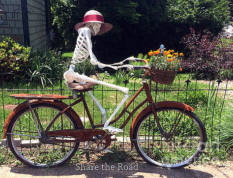 Share the Road by Steven  Digman