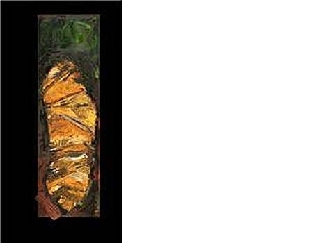 Shroud by Judy  Blundell